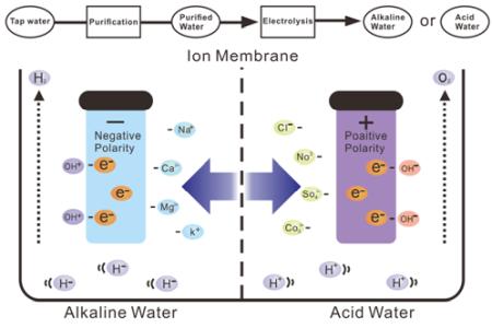 alkalive water